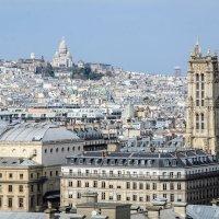 Париж,вид с Нотр-дам -де Пари :: Наталия