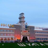 Речной вокзал в Чебоксарах :: Надежда