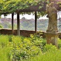 В городском  саду,вдали долина Таубер :: backareva.irina Бакарева