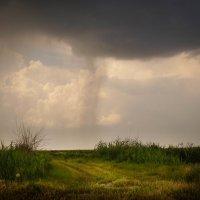 Летний дождь :: Алексей Салло