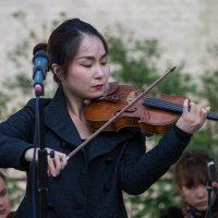 Первая скрипка :: Филипп Махов