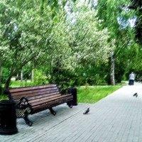 Тургеневское настроение... :: Полина Потапова