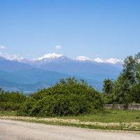 БК хребет, на перевале :: Лариса Батурова