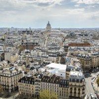 И снова Париж... :: Наталия