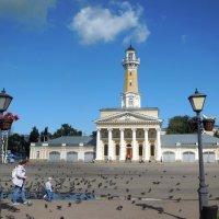 Кострома. Сусанинская площадь :: Надежда