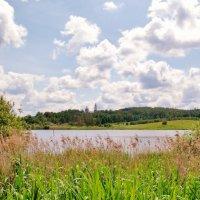 озеро :: Владимир