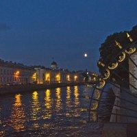 Ночная Фонтанка  у Летнего сада. :: Senior Веселков Петр