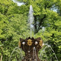 Летний сад. :: Евгений Яхим