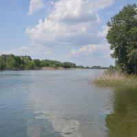 Река Суая. :: Виктор
