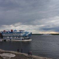 На  берегу Волги пасмурным днем... :: марина ковшова