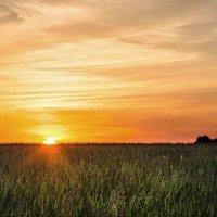 Когда солнце уходит за горизонт ... :: Va-Dim ...
