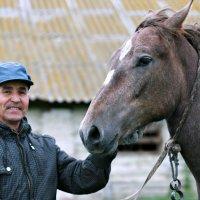 Милый конь, милый друг, мой красавец Агат ... :: Евгений Юрков