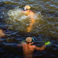 Молодые акванавты. :: barsuk lesnoi