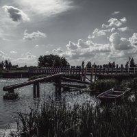 У старой деревенской плотины................ :: Александр Селезнев