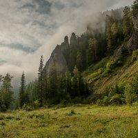Утро с туманом... :: Сергей Герасимов