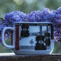 lilac still life :: Dmitry Ozersky