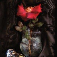 Аленький цветочек. :: Nata