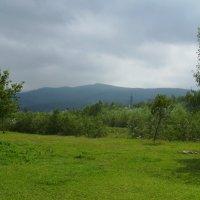 Буковое :: Андрей  Васильевич Коляскин