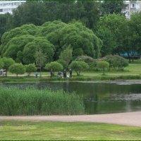 Озеро в городской черте :: Вера