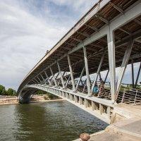 Мост через Сенну :: Светлана Щербакова