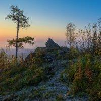 Холодный рассвет :: vladimir Bormotov