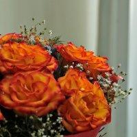 Букет необычных роз :: Светлана