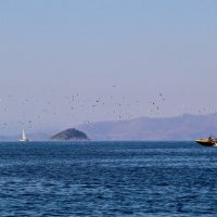 Море зовёт, волна поёт ... :: Маргарита ( Марта ) Дрожжина