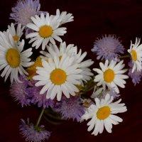 Букетик ароматных луговых цветов :: Татьянка *