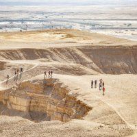 В пустыне :: Tatyana Belova