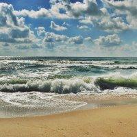 Морские страсти :: Swetlana V