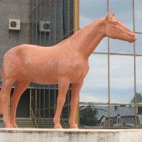 Гордый конь :: Дмитрий Никитин