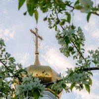 Храм в честь Благовещения Пресвятой Богородицы :: Дмитрий Сиялов