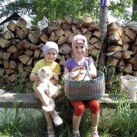 Сестрёнки :: Светлана Рябова-Шатунова