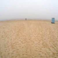 Туман с моря. :: Igor Shoshin
