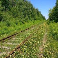 Туда не ходят поезда... :: Николай Белавин