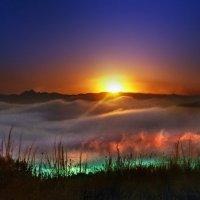 волшебный свет закатного тумана... :: viton