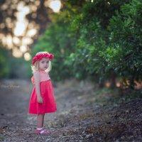 Малышка :: Elena Bebesh
