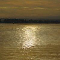 Утро на реке Свирь :: Владимир Кириченко  wlad113