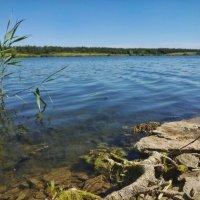 на озере :: Алина Гриб