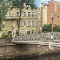 Канал Грибоедова. Львиный мостик. :: bajguz igor