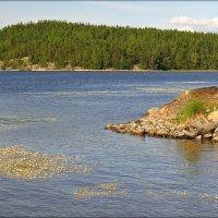 Ладожское озеро... :: Елена Швецова