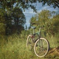 Утро с велосипедом :-D :: Алексей le6681 Соколов