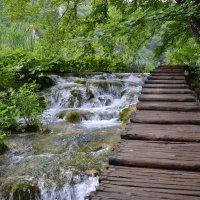 Плитвицкие озера ( Хорватия) :: tamara *****