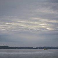 Небесные волны :: Алиса Колмагорова