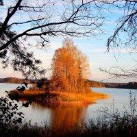 Осень :: Ольга Митрофанова