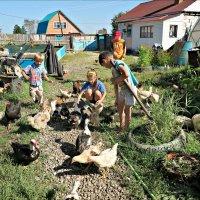 Летом на даче :: Leonid Rutov
