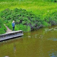 С любовью к природе... :: Sergey Gordoff