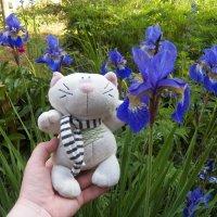 Батошка и цветочки 5 :: Регина Пупач