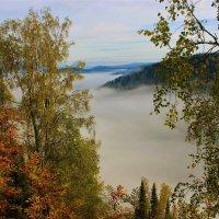 Утром лениво просыпаются туманы :: Сергей Чиняев