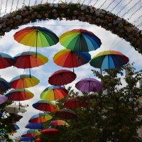 День города :: Лариса Вишневская